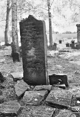 Jüdischer Friedhof Altona, Hamburg
